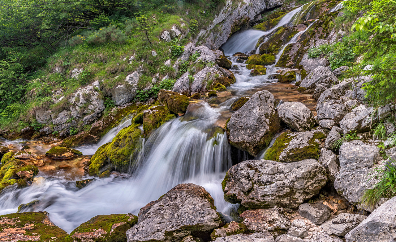 Pictures Slovenia Nature Stream Waterfalls Forests Stones Trees Creek brook Creeks Streams forest stone
