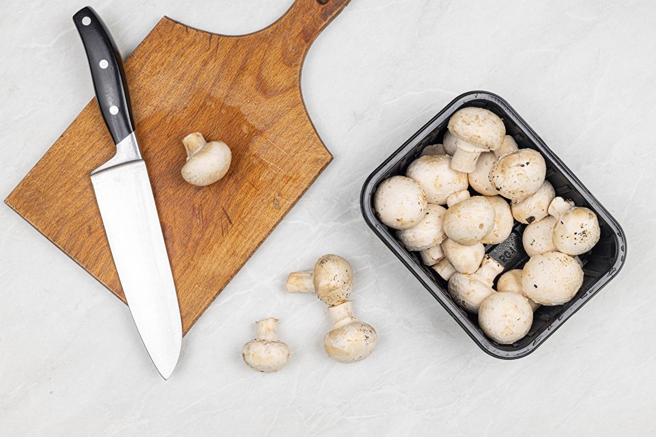 Bilder von Messer Zucht-Champignon Pilze Lebensmittel Schneidebrett Grauer Hintergrund das Essen
