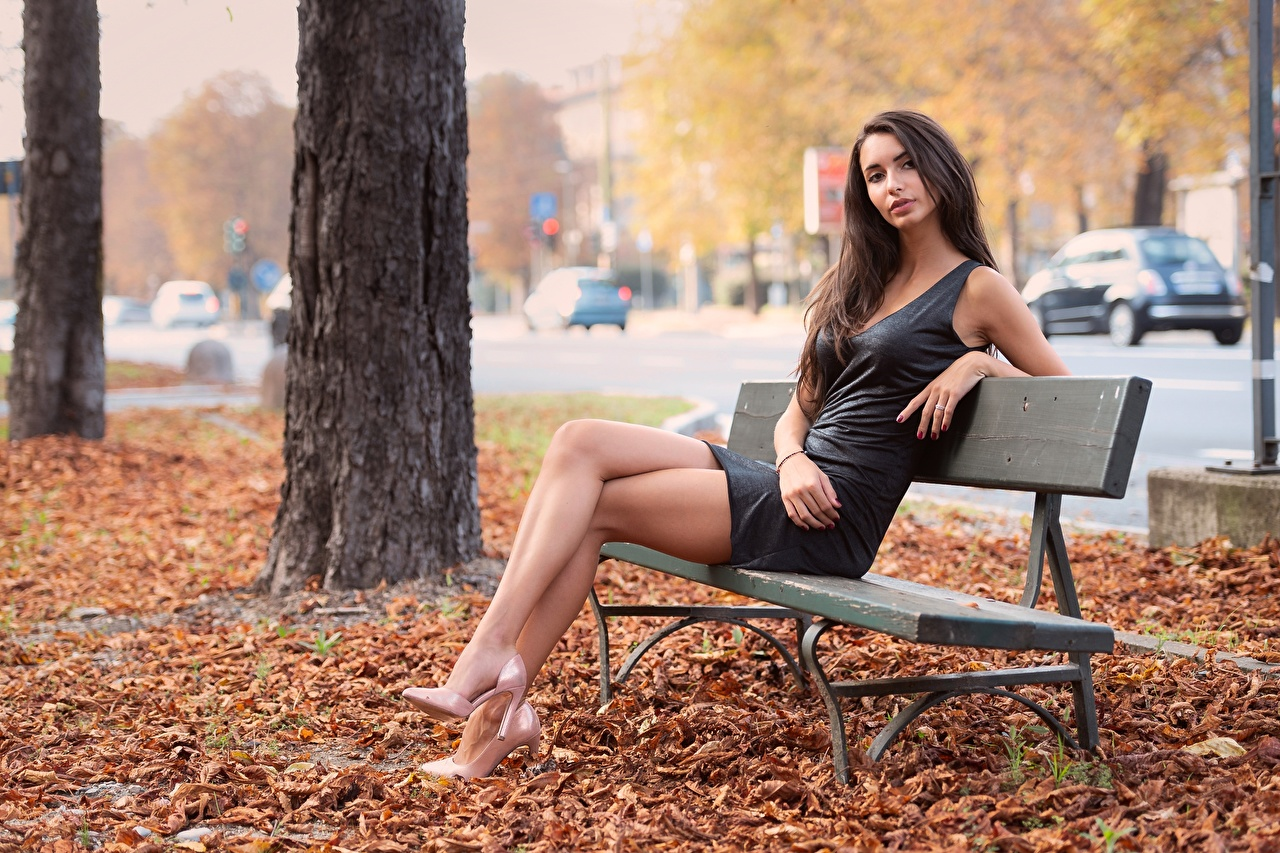 Photos Foliage Brown haired Autumn female Legs sit Bench Hands Dress high heels Leaf Girls young woman Sitting gown frock Stilettos