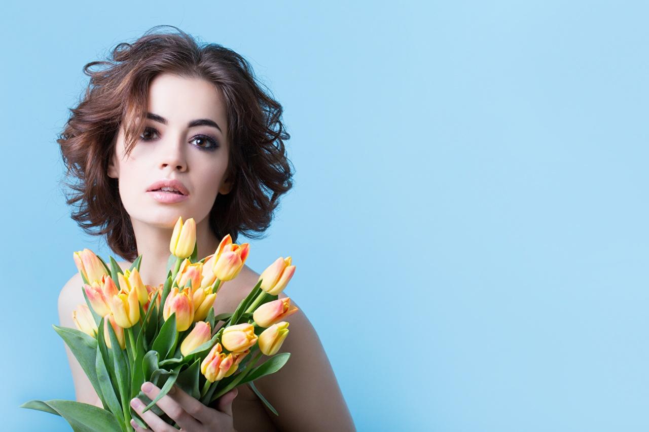 Bilder på skrivbordet Brunhårig tjej Fotomodell Buketter Tulpaner Unga kvinnor blomma ser Färgad bakgrund blomsterbukett ung kvinna tulpansläktet Blommor Blick