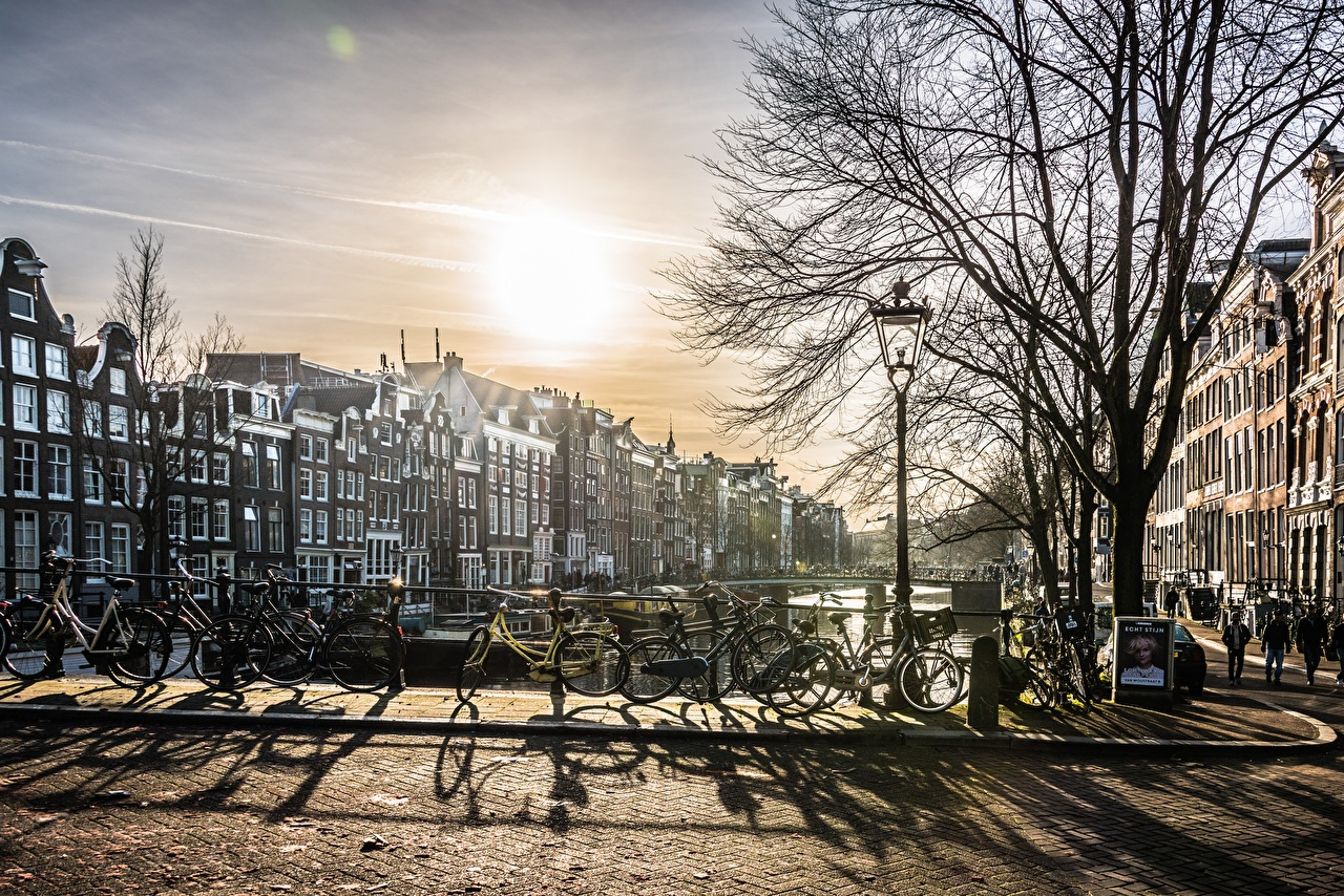 Picture Amsterdam Netherlands Bicycle Sunrises and sunsets Street lights Trees Cities bike bicycles sunrise and sunset
