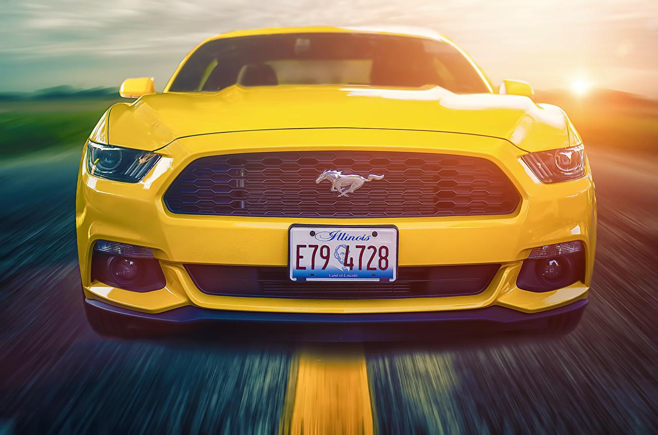 Bakgrundsbilder Ford Mustang 2015 Gul går bil Framifrån Rörelse Bilar automobil