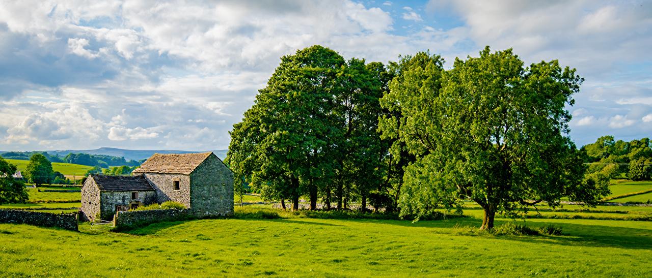 Inglaterra Panorama Chelmorton árvores Nuvem panorâmica Naturaleza