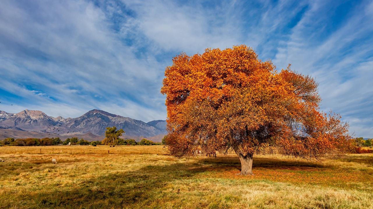 Fotos von Vereinigte Staaten Sierra Trailer Park Natur Herbst Gebirge Himmel Bäume USA Berg