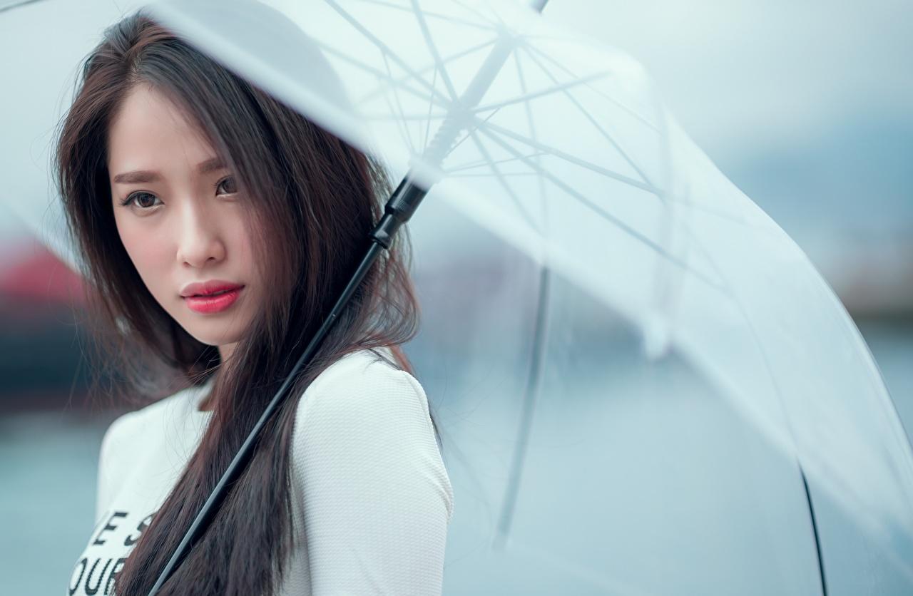 Fotos von Brünette Bokeh Mädchens Asiatische Regenschirm Blick unscharfer Hintergrund junge frau junge Frauen Asiaten asiatisches Starren