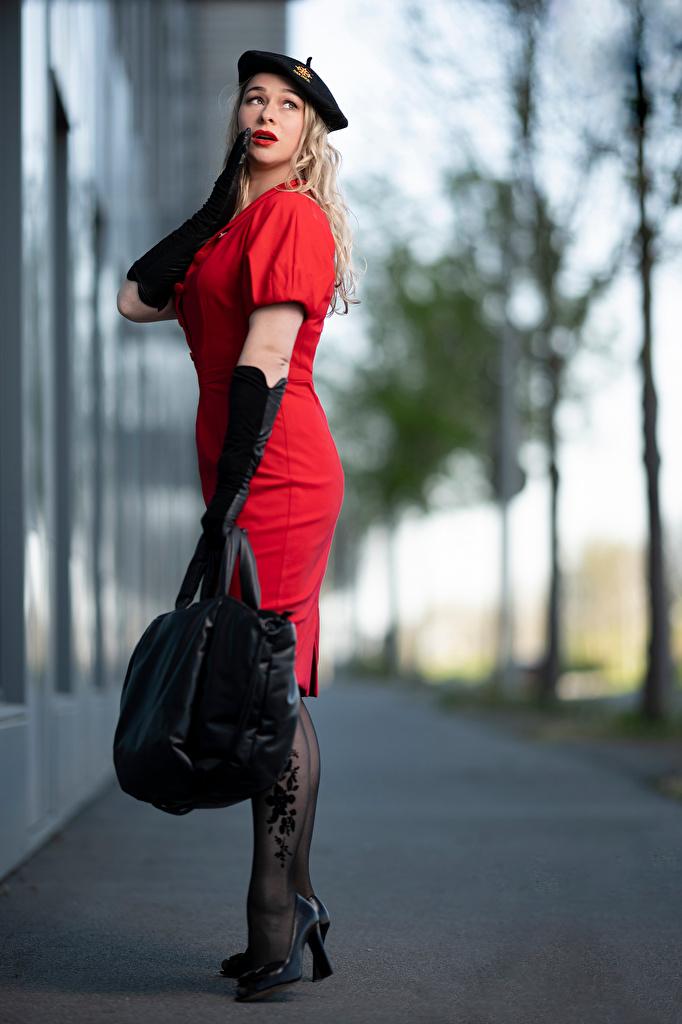 Foto Blondine Handschuh unscharfer Hintergrund Barett posiert junge frau Handtasche Kleid  für Handy Blond Mädchen Bokeh Pose Mädchens junge Frauen