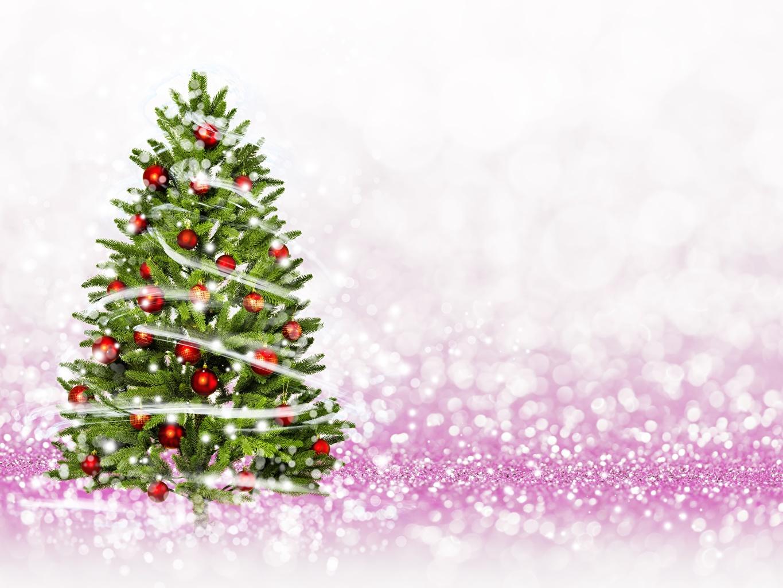 Photo Christmas New Year tree Balls New year Christmas tree