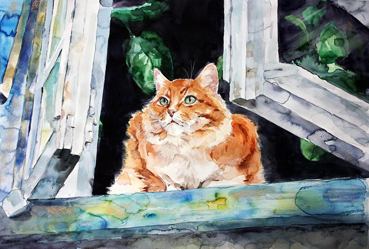 Bilder Katze Elenashved watercolor Fenster Tiere Gezeichnet Katzen Hauskatze ein Tier