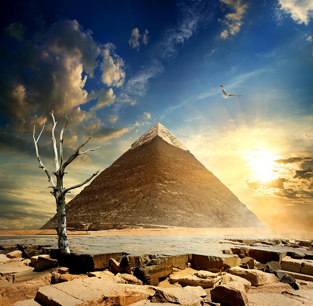 Fonds D Ecran Egypte Desert Ciel Cairo Pyramide Architecture Nature Telecharger Photo