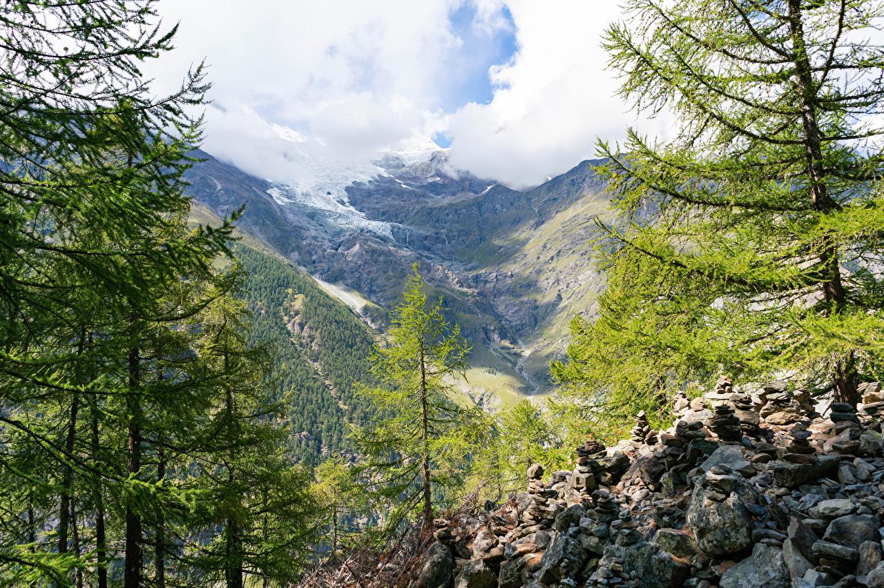 Photos Alps Switzerland Randa Nature Mountains Stones Trees mountain stone