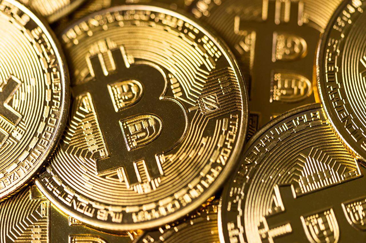 Bilder på skrivbordet Bitcoin Ett mynt Guld färg Närbild Gyllene färg
