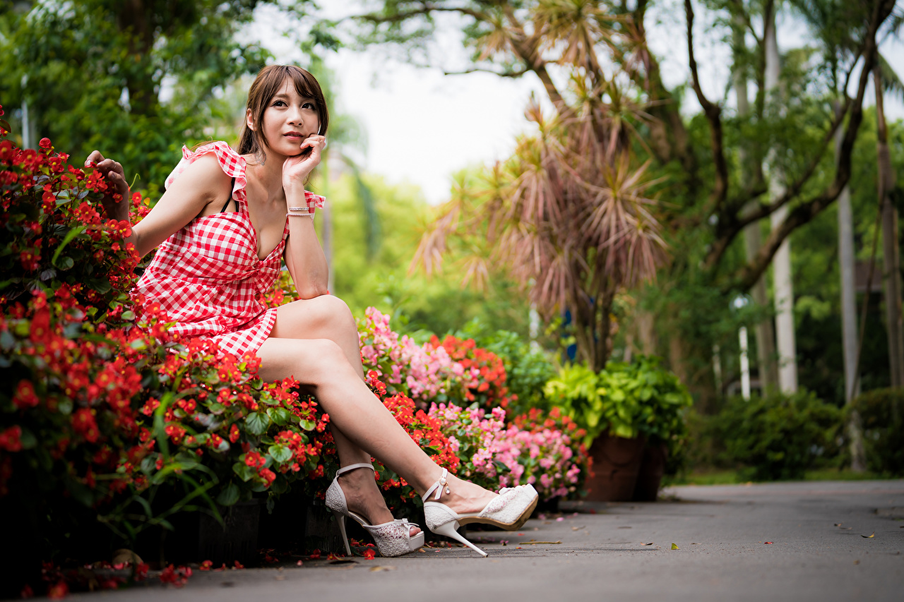 Photos Brown haired young woman Legs Asian Sitting Staring Dress Girls female Asiatic sit Glance gown frock