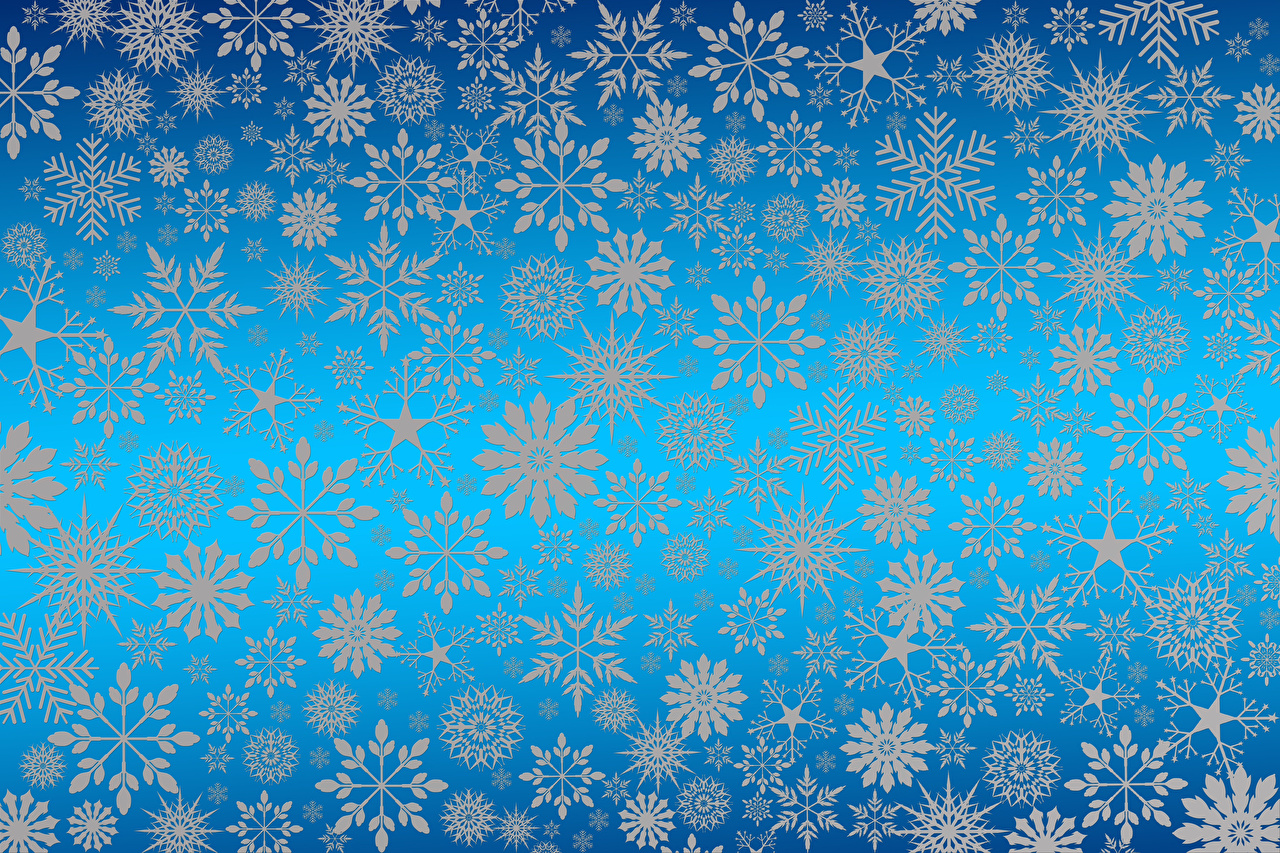Picture Texture New year Snowflakes Colored background Christmas