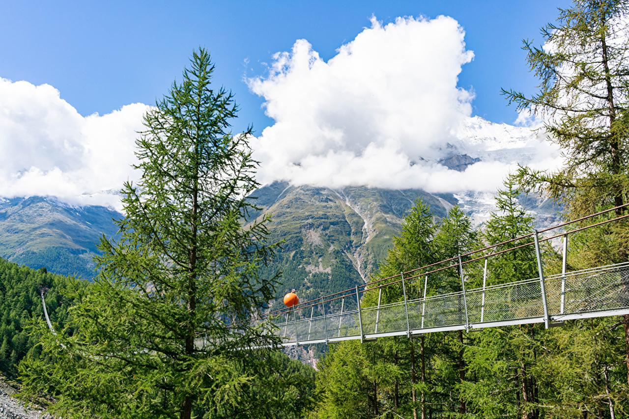 Image Alps Switzerland Charles Kuonen suspension bridge Spruce Nature mountain Clouds Bridges Mountains