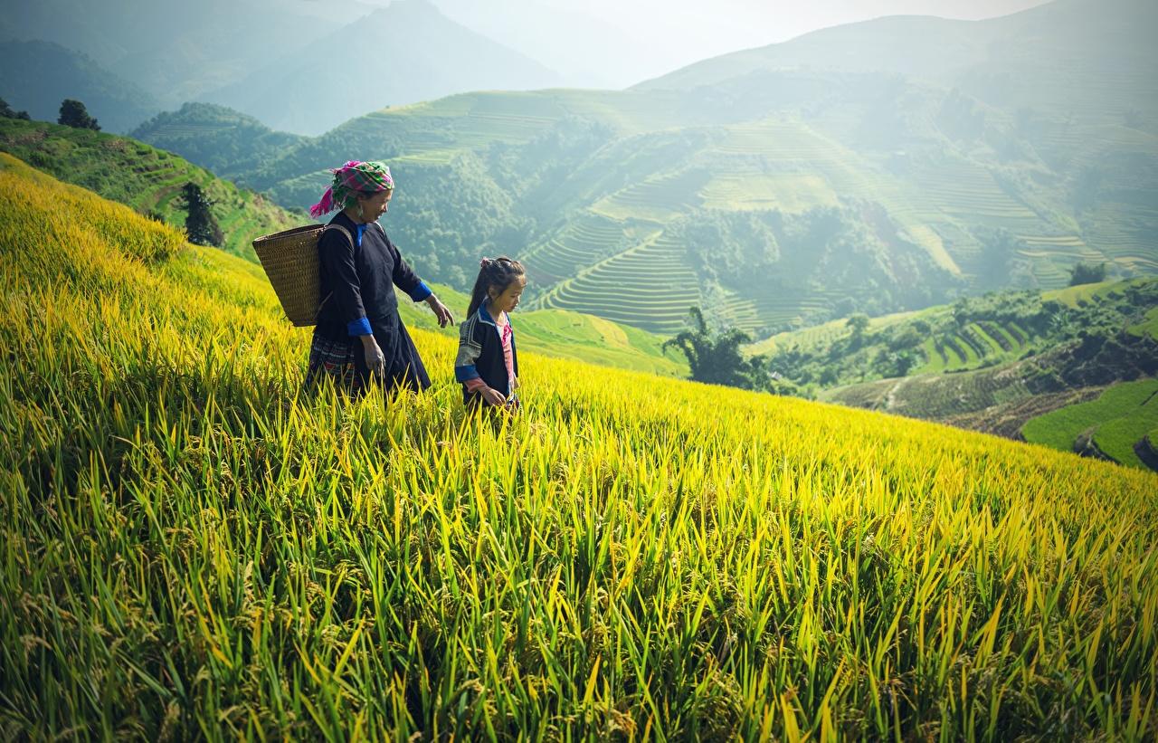 Fotos Kleine Mädchen Alte Frau Kinder Zwei Natur Gebirge Acker Weidenkorb asiatisches Gras ältere frauen kind 2 Berg Felder Asiaten Asiatische