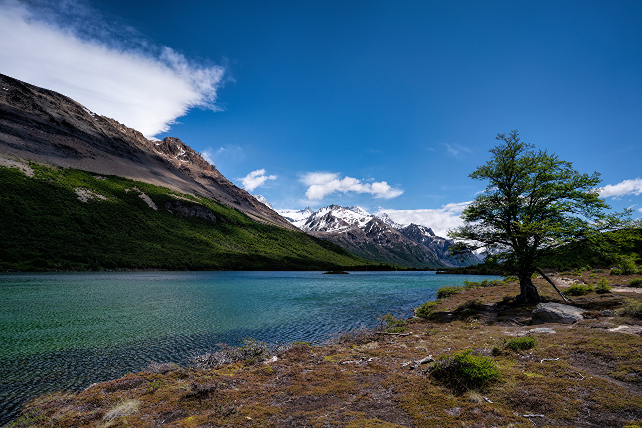 Desktop Hintergrundbilder Argentinien Laguna Hija Berg Natur See Bäume Gebirge