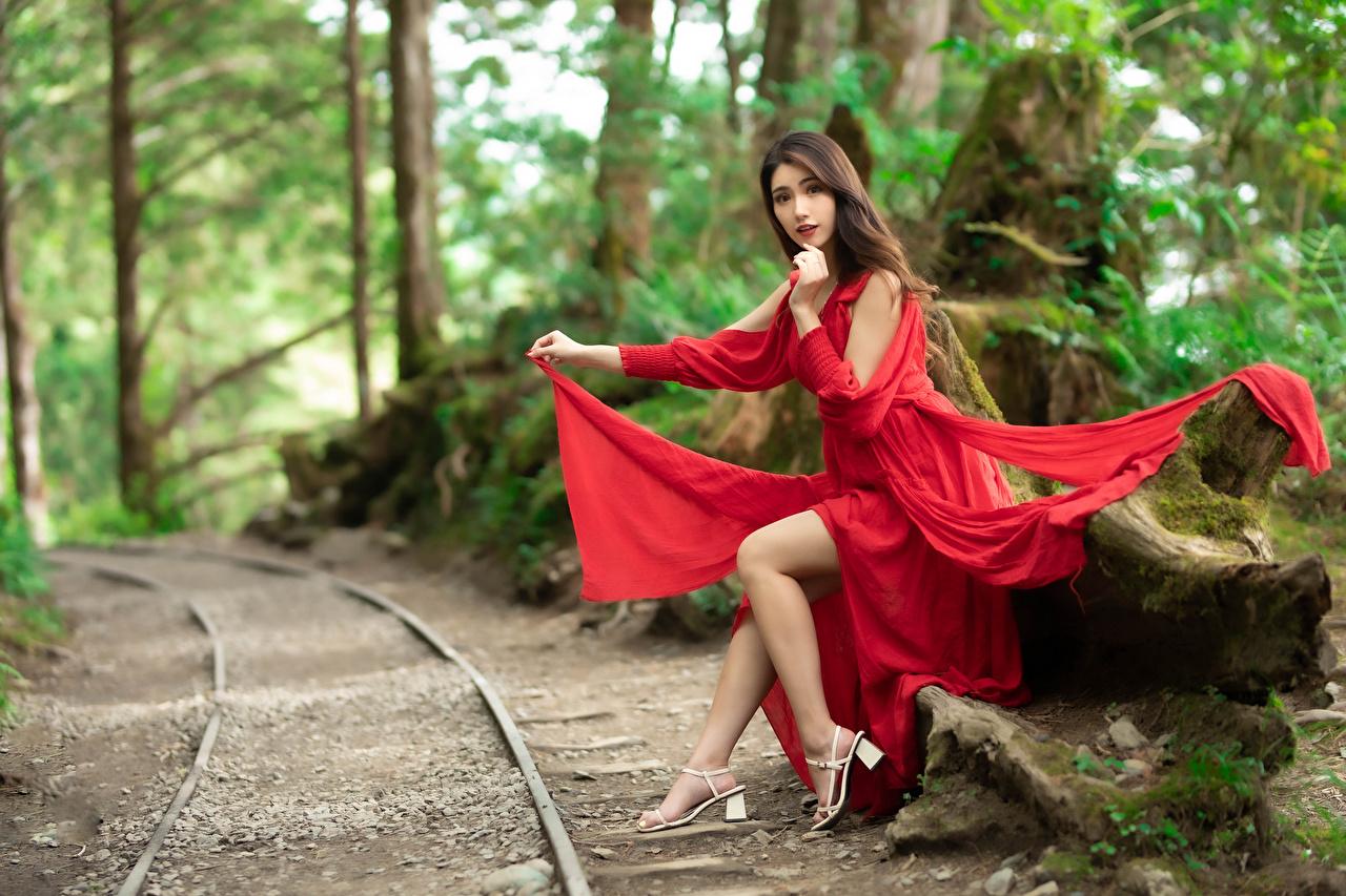 Foto Bokeh Mädchens Bein asiatisches sitzt Starren Kleid unscharfer Hintergrund junge frau junge Frauen Asiaten Asiatische sitzen Sitzend Blick