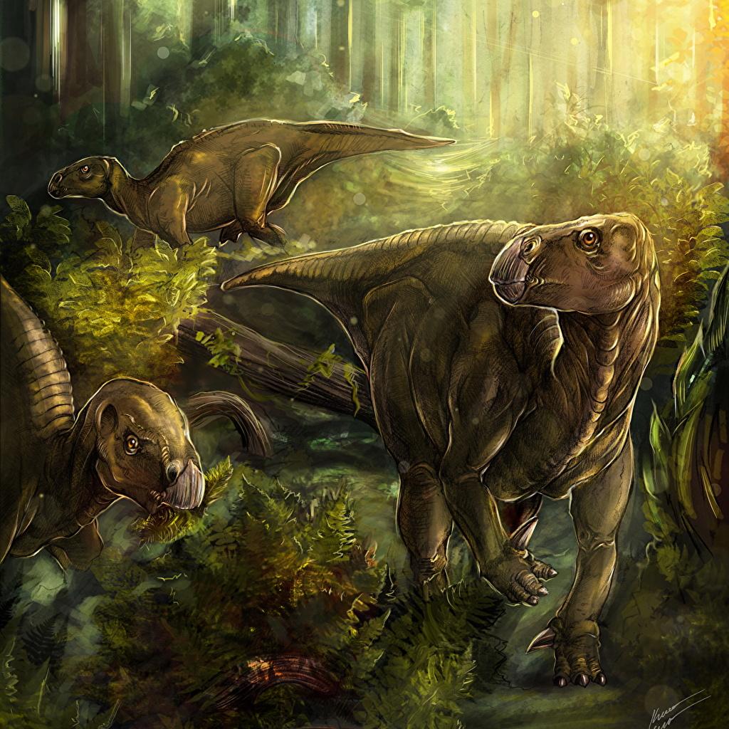 Foto Dinosaurier Iguanodon Drei 3 ein Tier Alte Tiere Tiere