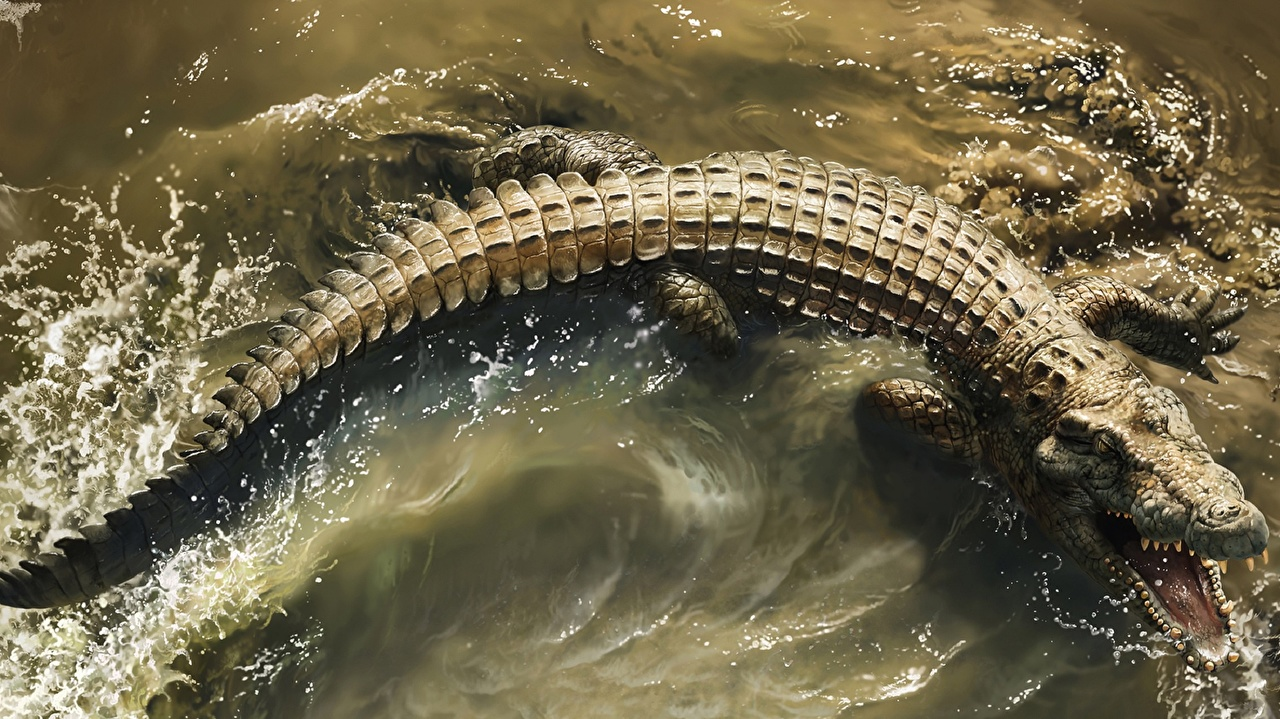 Photos Crocodiles Roar Water From above animal angry Animals