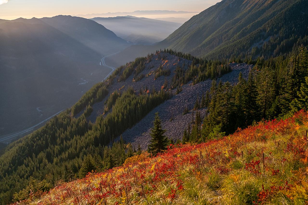 Bilder Texas USA Natur Gebirge Wälder Gras Vereinigte Staaten