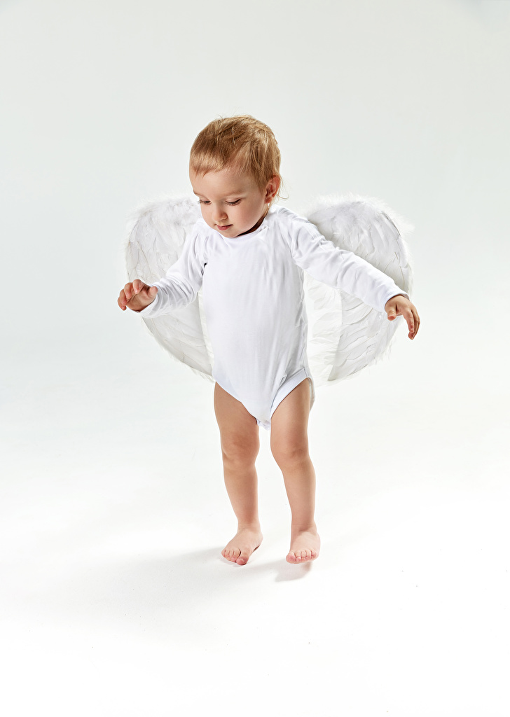 Images Boys Wings Children Angels Gray background