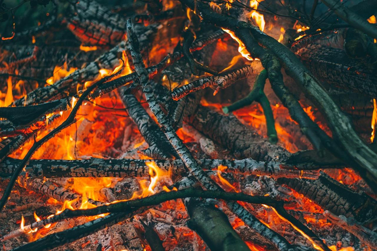 Desktop Wallpapers Smoldering coals Bonfire flame Branches Closeup burning coals Fire