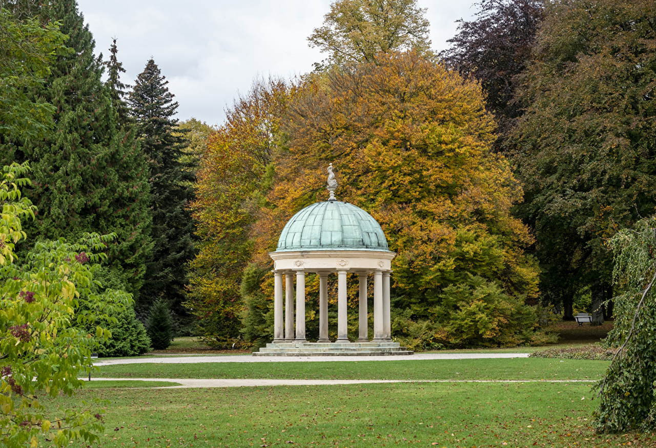 Fotos Blattwerk Deutschland Bad Pyrmont, Kurpark Natur Herbst Parks Rasen Bäume Blatt Park