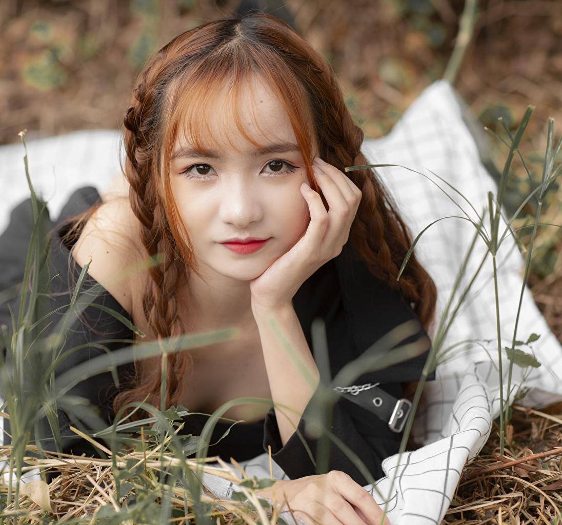 Fotos Braune Haare Zopf Mädchens Asiaten Gras Starren Braunhaarige junge frau junge Frauen Asiatische asiatisches Blick