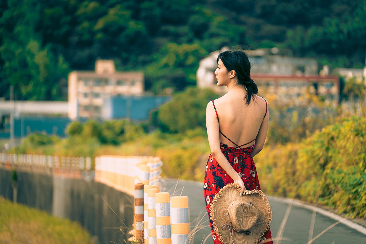 Bilder Brünette Bokeh Rücken Der Hut Mädchens asiatisches Hinten Kleid unscharfer Hintergrund junge frau junge Frauen Asiaten Asiatische