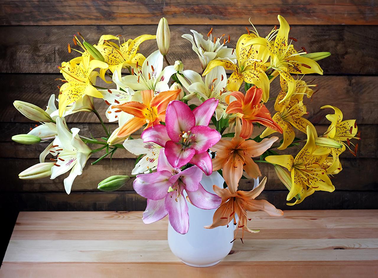 Bakgrunnsbilder Buketter lilje blomst Vase Blomst knopp bukett Liljer Blomster
