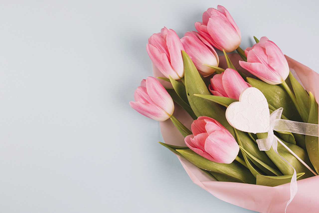 Photo Heart Bouquet Tulips Pink Color Flowers Gray Background