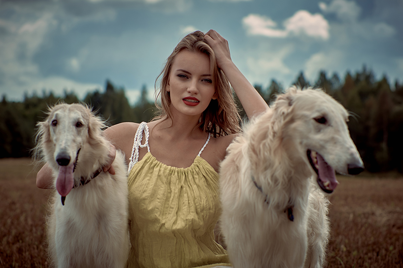 Photo Sighthound Dogs Blonde girl Russian hunting sighthound Two Girls Glance animal dog 2 female young woman Staring Animals