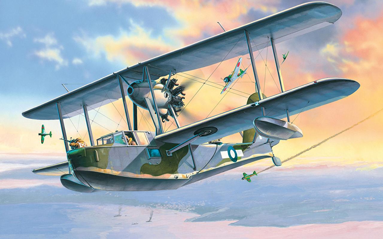 Pictures Airplane Supermarine Walrus Mk I Flight Painting Art