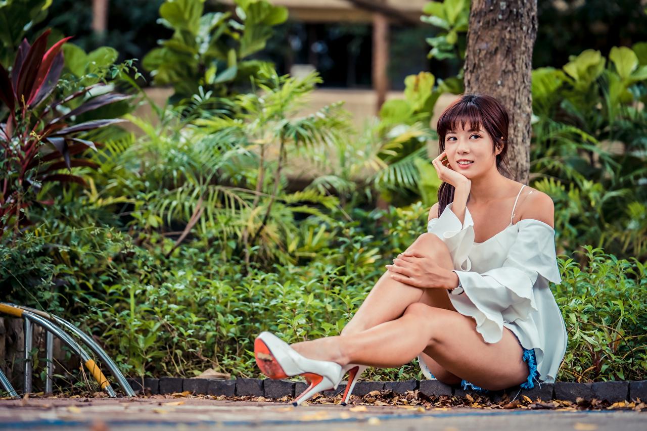 Desktop Hintergrundbilder Mädchens Bein Baumstamm Asiatische Sitzend Blick Stöckelschuh junge frau junge Frauen Asiaten asiatisches sitzt sitzen Starren High Heels