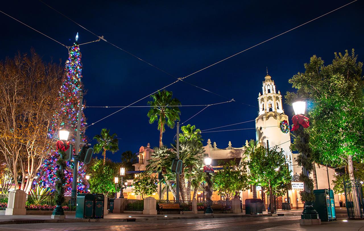 Desktop Wallpapers California Disneyland USA New year Christmas tree park night time Street lights Cities Design Christmas New Year tree Parks Night