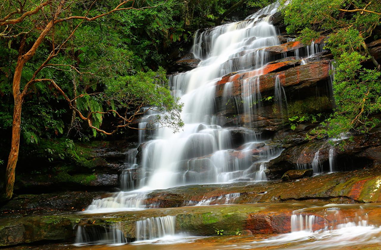 Wallpaper Brisbane Australia Nature Waterfalls Parks Trees