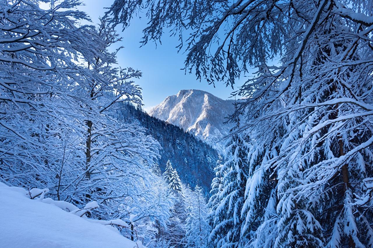 Foto Alpen Österreich Natur Winter Gebirge Schnee Berg