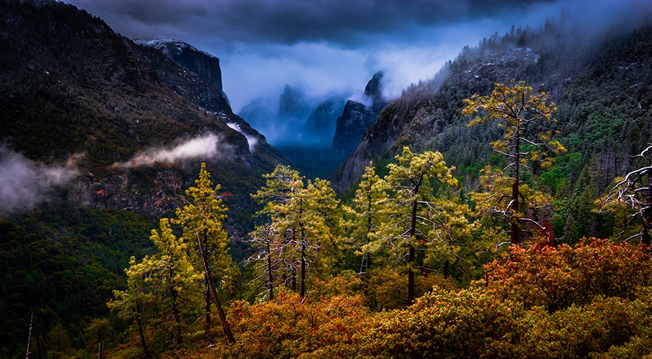 Image Yosemite California USA Sierra Nevada Nature mountain Forests Trees Mountains forest