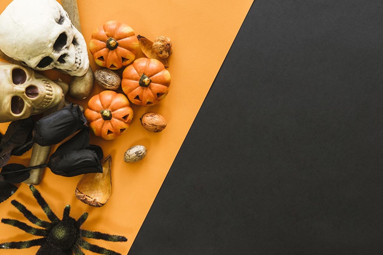 Desktop Wallpapers Hellboy Skulls Pumpkin Holidays