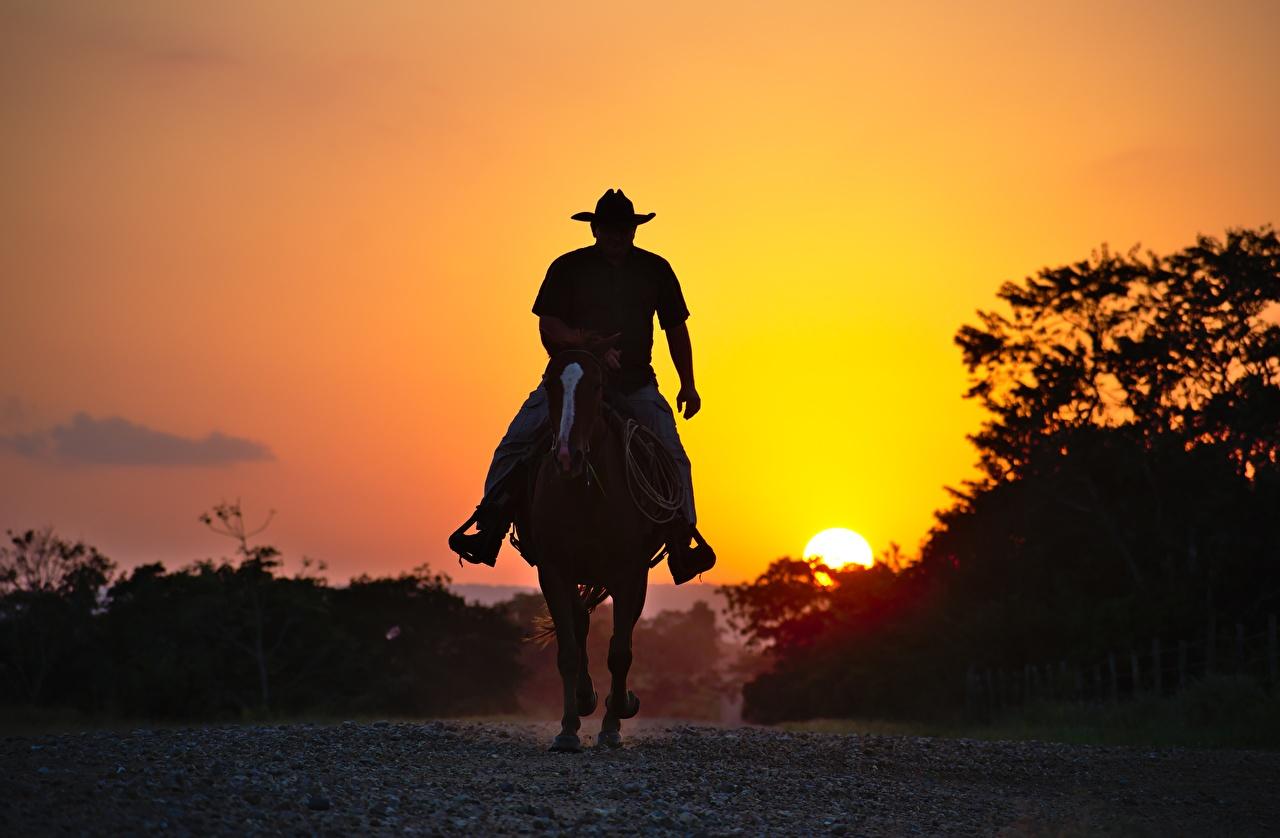 Fotos Pferde Cowboy Silhouetten Sonnenaufgänge und Sonnenuntergänge ein Tier Pferd Hauspferd Silhouette Morgendämmerung und Sonnenuntergang Tiere