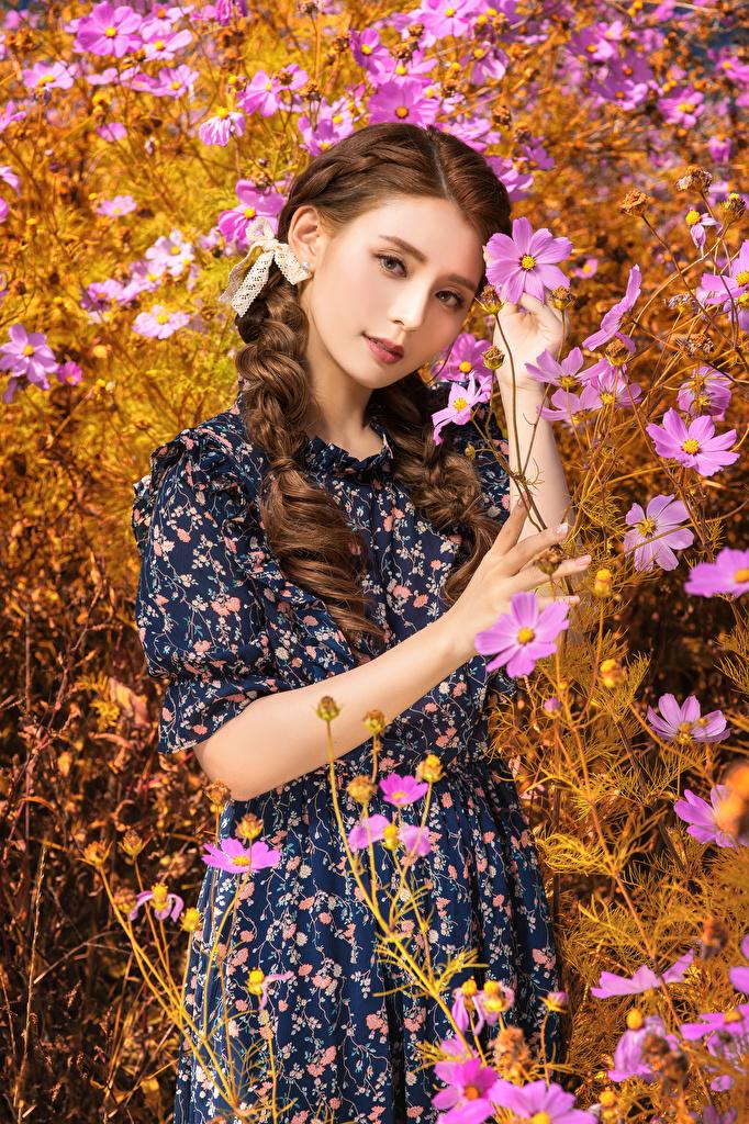 Foto Braune Haare Mädchens Kosmeen Asiatische Blick Kleid  für Handy Braunhaarige junge frau junge Frauen Asiaten asiatisches Schmuckkörbchen Starren