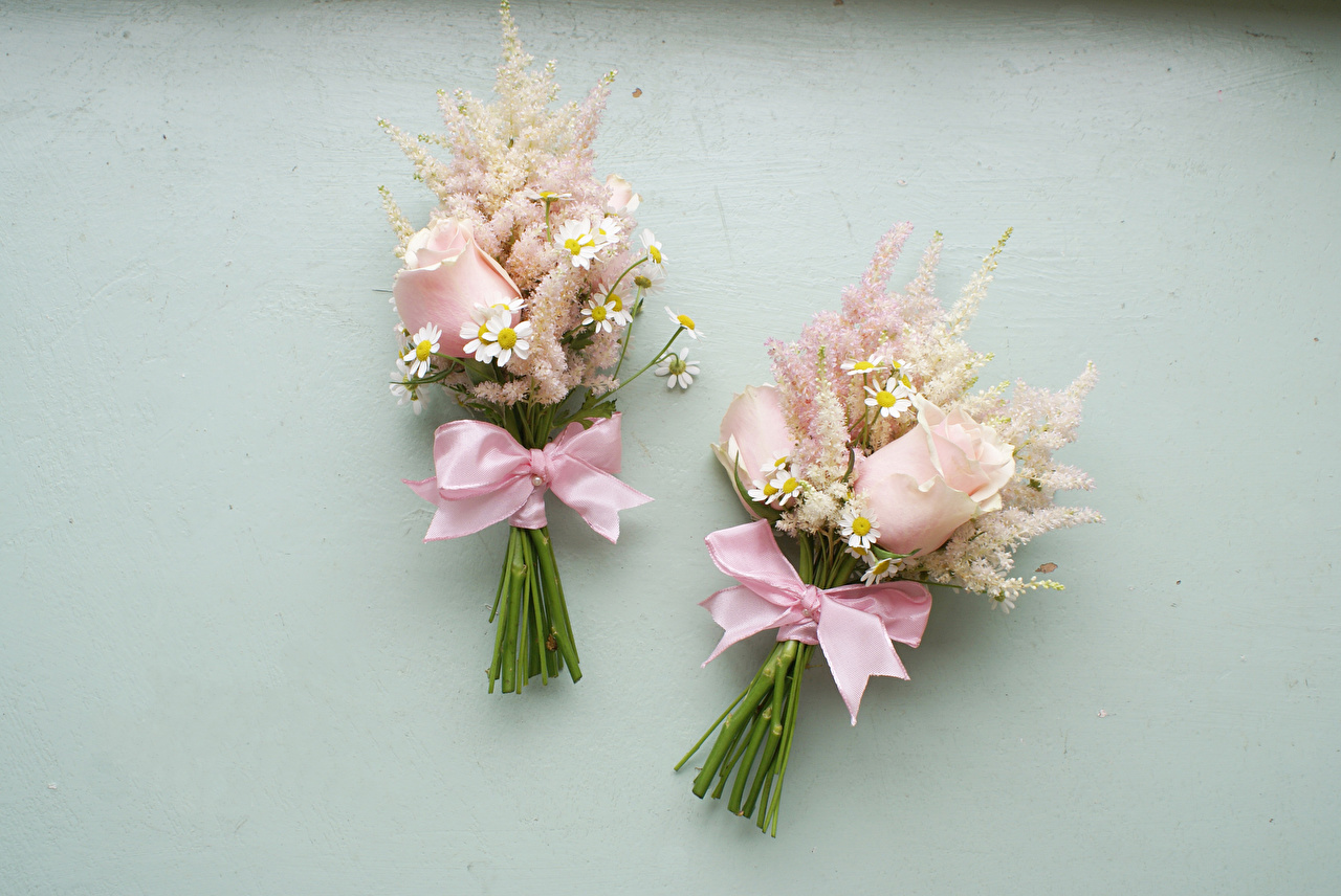 Photo Bouquets Two rose Flowers Camomiles Bowknot Gray background bouquet 2 Roses flower matricaria bow knot