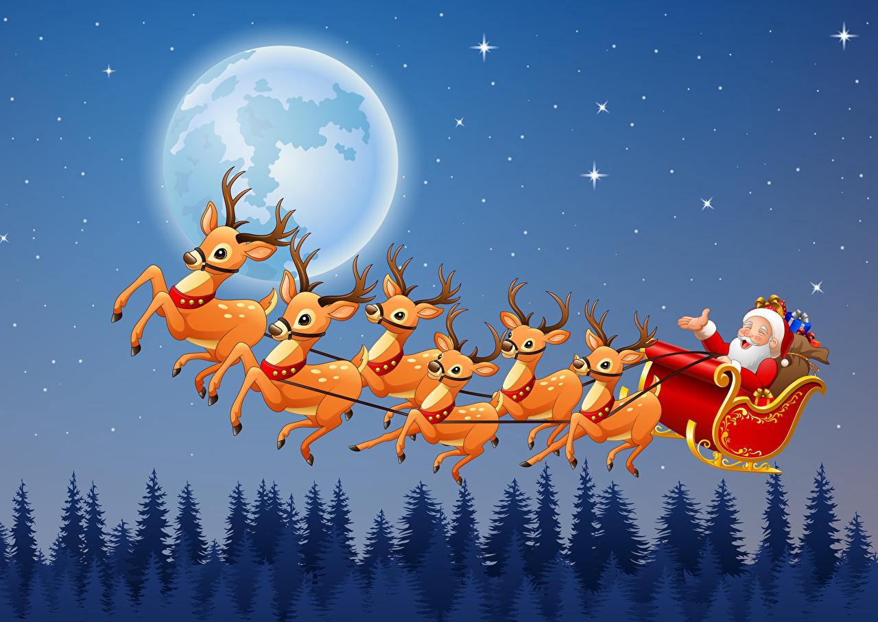 Обои для рабочего стола Олени Рождество Санки Дед Мороз Луна Ночь летят Векторная графика Новый год Сани санях санках Санта-Клаус луны луной ночью летит Полет в ночи Ночные летящий
