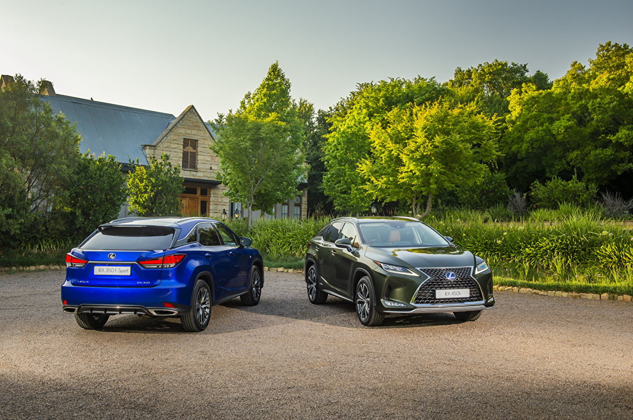 Pictures Lexus 2019-20 RX Two Cars Metallic 2 auto automobile