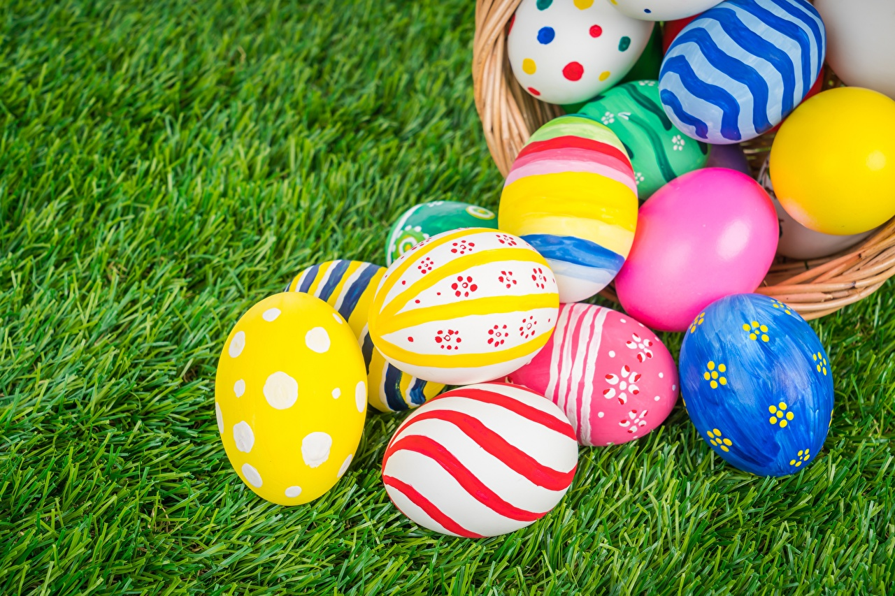 Fotos Ostern Bunte Ei Mehrfarbige eier