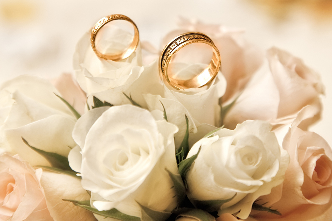 Wallpaper Marriage Bouquets White Roses Ring Flowers