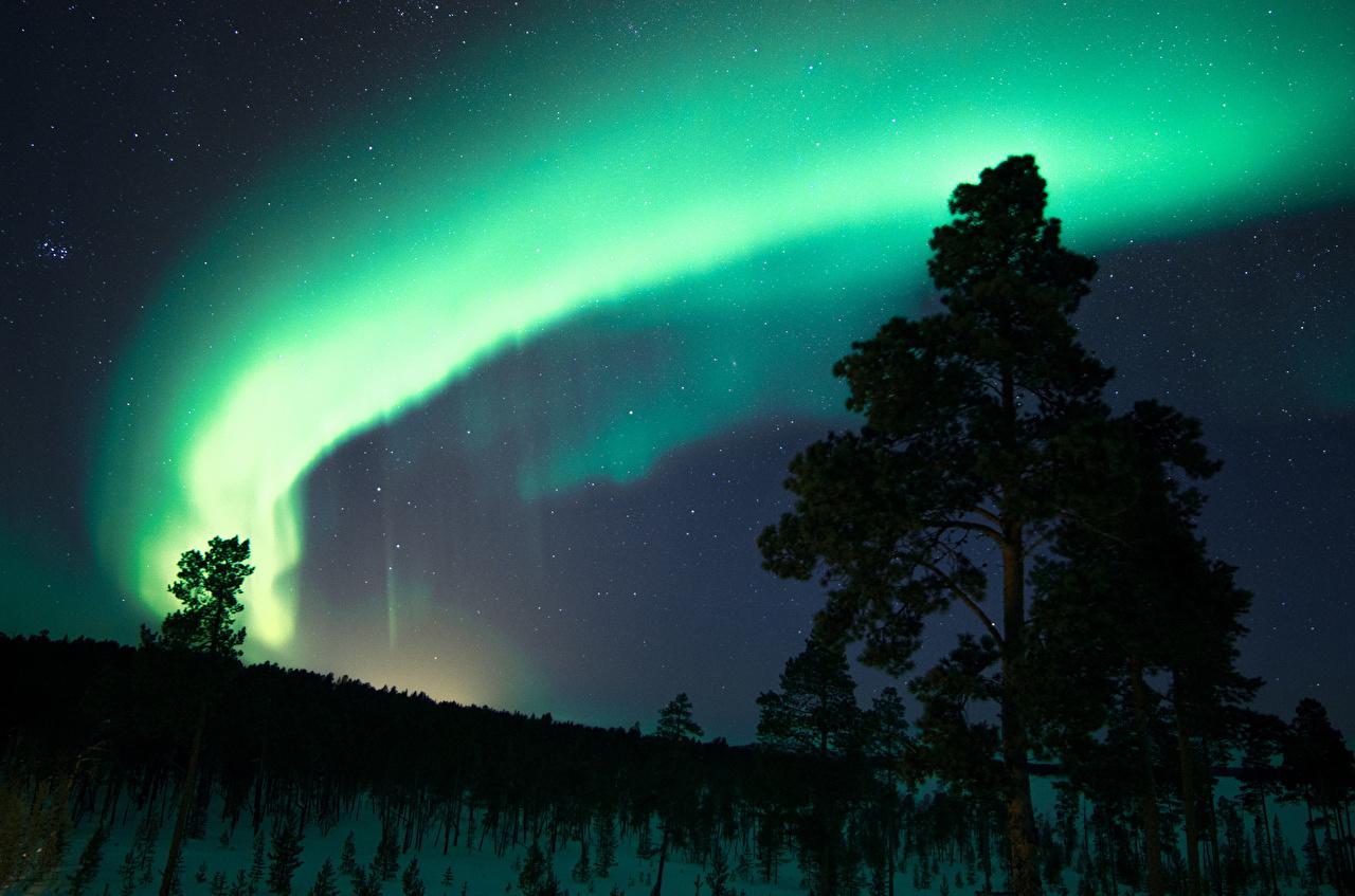 、フィンランド、オーロラ、夜、自然、
