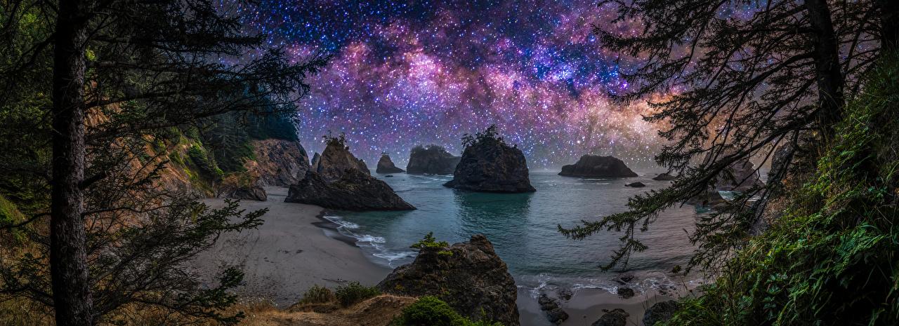 Photos USA Stars Panorama Oregon Cliff Nature Coast night time Trees panoramic Crag Rock Night