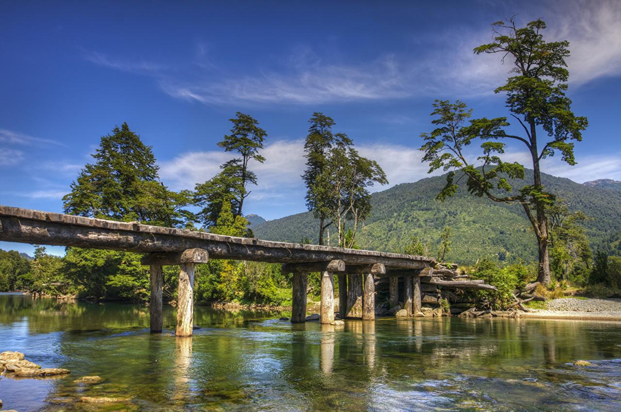 Picture Chile Patagonia bridge Nature mountain river Trees Bridges Mountains Rivers