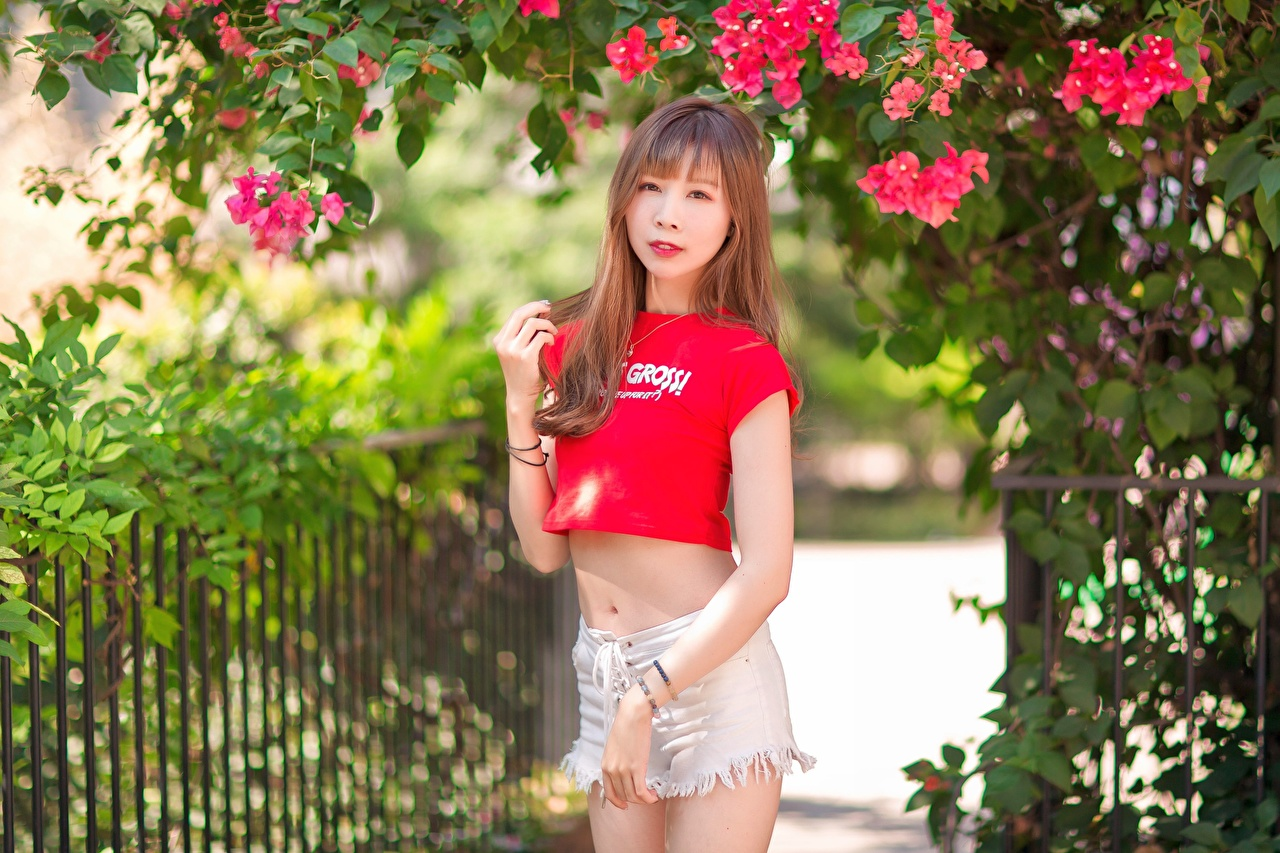 Images Brown haired young woman Asian Hands Shorts Branches Glance Girls female Asiatic Staring